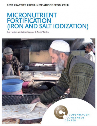 2. Micronutrient fortification (iron and salt iodization) image