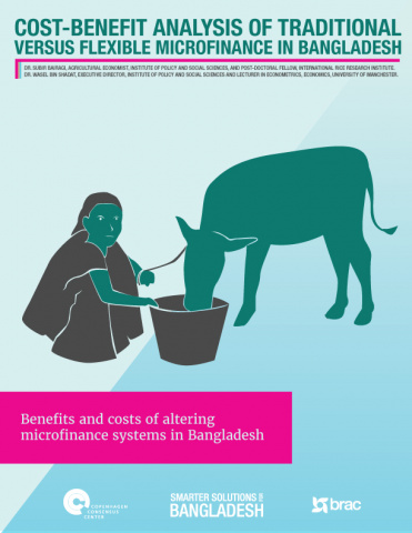 Traditional Versus Flexible Microfinance in Bangladesh image