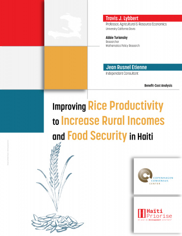 Improving Rice Productivity to Increase Rural Incomes and Food Security in Haiti image
