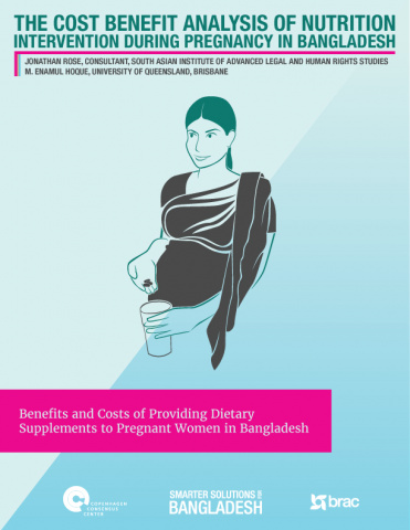 The Cost Benefit Analysis of Nutrition Intervention During Pregnancy in Bangladesh image