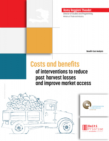 Costs and Benefits of Interventions to Reduce Post-Harvest Losses and Improve Market Access image