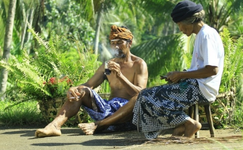 Indonesian Perspectives: Non-communicable Diseases  image
