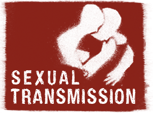 Efforts to Prevent Sexual Transmission image
